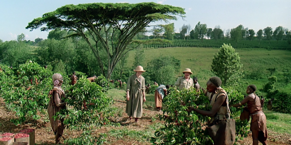 outofafrica1