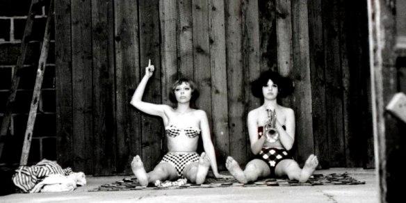 daisies bikinis